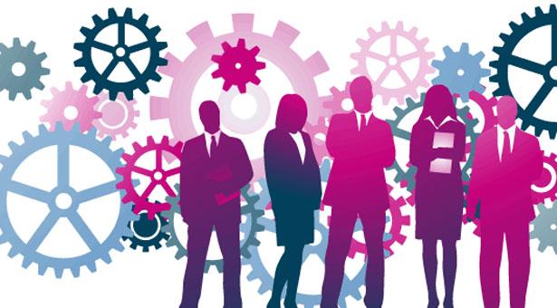 صورة برامج إدارة الموارد البشرية